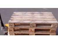Euro pallets /ideal for garden sofas/building etc £5 free local delivery