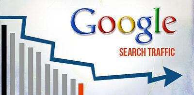 100000 Keyword Targeted Google Organic Website Visitors Only 35.99