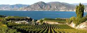 Looking for vacation rental in Penticton