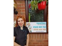 AquaClean - Cleaning Lady Available - Market Drayton