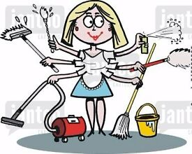 FULLY INSURED EXPERIENCED CLEANER WITH REFRENCES
