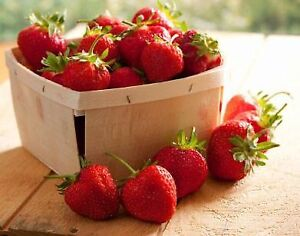 Free local Strawberries