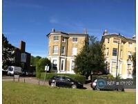 1 bedroom flat in Dartmouth Terrace, London, SE10 (1 bed)