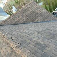 Dragon Star Roofing Inc, excellent quality and great price