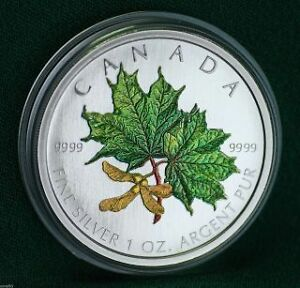 2001-2006 Coloured 1 oz Silver Maple Leaf Collector RCM Coins Edmonton Edmonton Area image 4