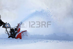 Looking for a decent reliable snowblower !