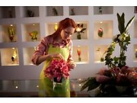 Florist assistant (Luxury Florist)