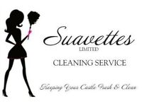 Domestic, End Of Tenancy, Ironing & Carpet Cleaning