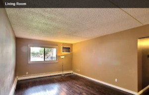 2 bdrm Condo for rent available Oct 1- $1100 inc utilities