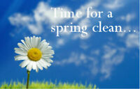 AFFORDABLE SPRING CLEANING