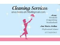 Professional Cleaner service