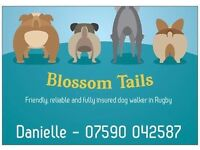Dog walking services - Rugby and surrounding areas