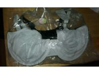 46G Bras x 6 from Evans BNWT and Hangers