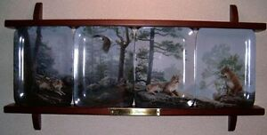 Natures Harmony 4 plate collector series  The Bradford exchange