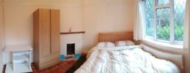 Double Room in Friendly Professional House