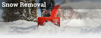 ONE TIME SNOW REMOVAL