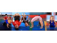 Beginner Gymnastic Classes Wednesday and Friday 6:30pm -7:30pm