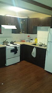 One largre bed room basement suite near Shawnessy LRT