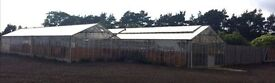 Large Greenhouse for Sale