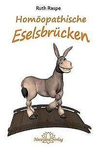 Homöopathische Eselsbrücken - Ruth Raspe - 9783943309256 (Ruth Brücken)