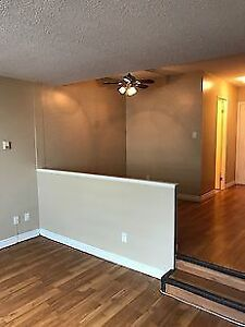 Beautiful Newly Renovated Bachelor Suite Downtown