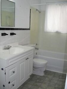 2 BR Apartment Available Feb 1st.