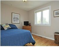 8 bdr home in Old Ottawa South / Glebe - STUDENTS WELCOME