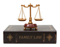 Family court? Need help filling forms legal student can help you