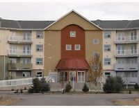 1100 square foot condo in Airdrie for rent!!