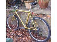 Men's Diamondback Mountain Bicycle