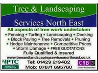 North east tree & landscaping services:tree removal,pruning,Artifical turf,turfing,fencing,free est.