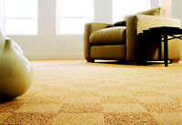 Carpet/Upholstery Cleaning - Lacombe, Sylvan Lake, Innisfail…