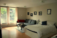 Sunny, Spacious Bachelor Suite - 2 Balconies - SW Downtown