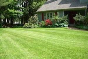 Oz gardener Roselands Canterbury Area Preview