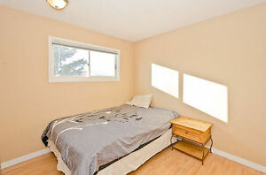 Nice Size Bedroom For rent in Upstairs of house $500 All Incl