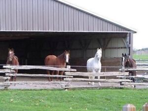 79 acre horse farm in Keene