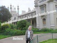 professional cleaner - Barbara