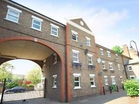 Lovely Modern 3 Bedroom House near Oval Tube Station