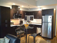DOWNTOWN FURNISHED 2 BEDROOM AT COLOURS CONDO