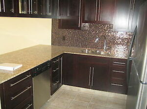 1 bdrm in Kensington - Big kitchen, granite countertops, view