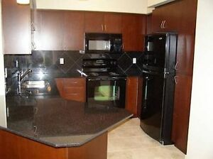 AMAZING 2 BDRM 2 BATH UPGRADED APARTMENT FOR RENT - JUNE 1ST