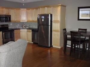 HIGH END WALK OUT SUITE ON ACREAGE - UTILITIES INCLUDED