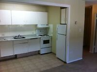 1 BEDROOM IN LOWER MOUNT ROYAL - AUGUST 1ST!