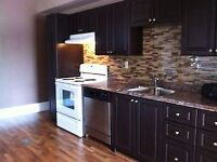 Newly Renovated High River Home - Main Floor - Utils included
