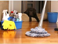 Reliable, Experienced Domestic Cleaner Available 7 Days a Week - Ruislip / Hillingdon Areas