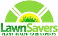 High-Tech Lawn Care- Year-Round- NO PLOWING! Will train.