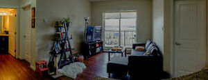 Profesional Real Estate Photography Services