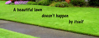 Affordable Lawn Care $25/hr