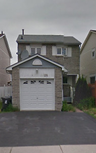 ***NEW*** HOUSE FOR RENT NEAR HUMBER COLLGE NORTH CAMPUS