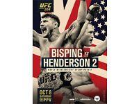1 x UFC 204 Lower Tier Ticket